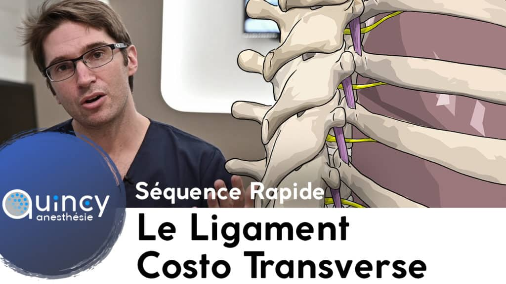 Séquence Rapide ligament costo transverse