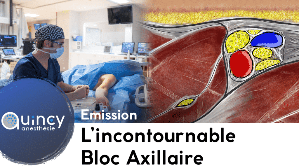 Incontournable bloc axillaire 2021
